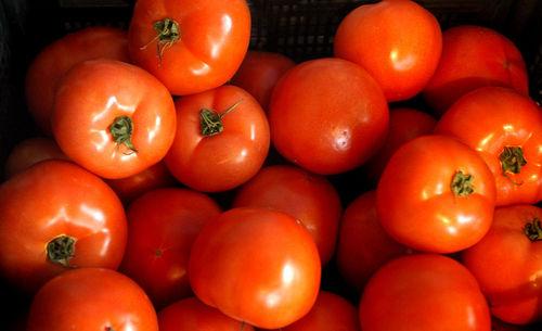 Българската агенция по безопасност на храните (БАБХ) установи наличие на