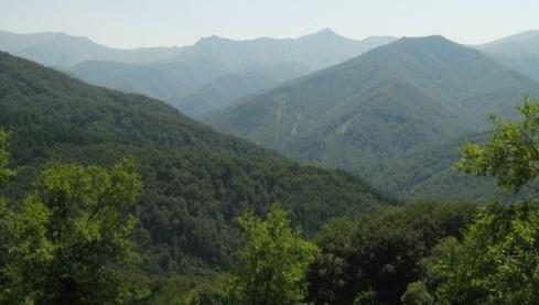 Две деца са били спасени тази нощ в Лозенската планина