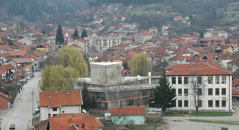 49 зрелостници завършват тази година гимназията в Босилеград, в Западните