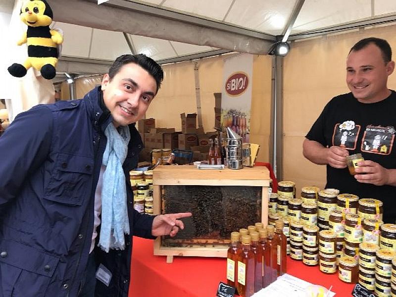 Повече подкрепа за пчеларския сектор, която да бъде финансово подплатена