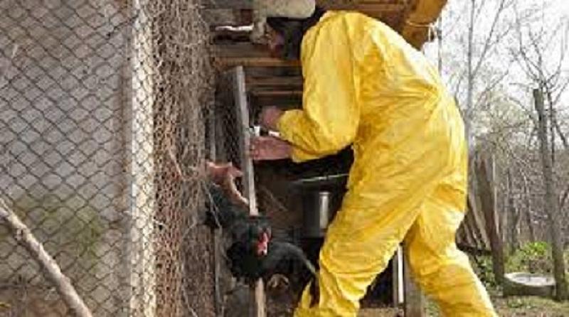 Служителите на Българската агенция по безопасност на храните (БАБХ) откриха