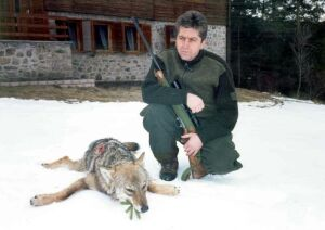 Image result for първанов ловец, убити животни