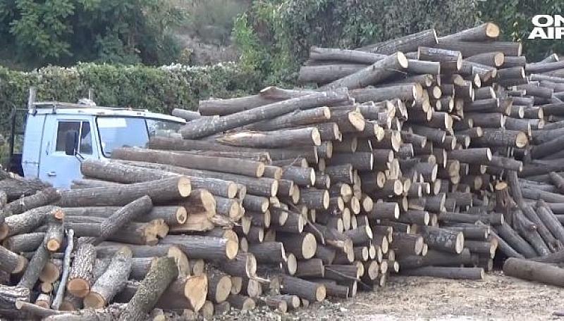 Проблем за хора, които се отопляват на дърва регистрират в