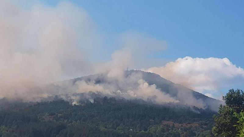 Снимка: Голям пожар гори край Реброво