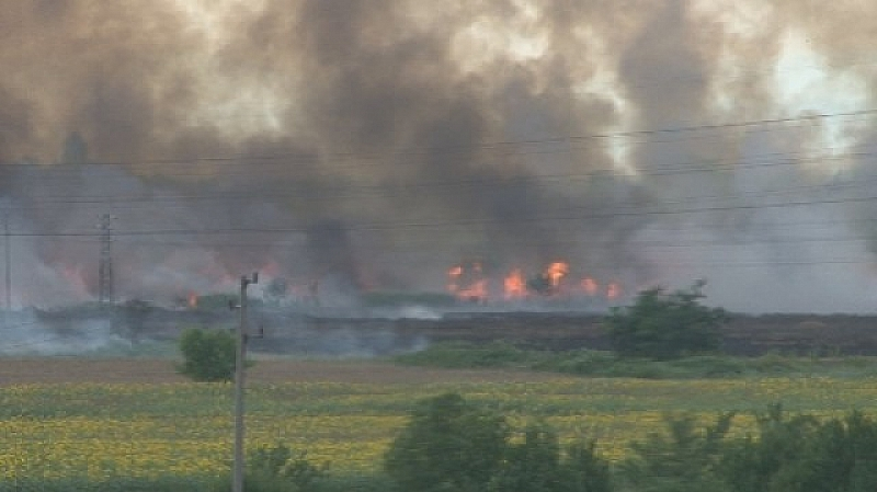 Голям пожар се разгоря в покрайнините на Пловдив. Гъст дим