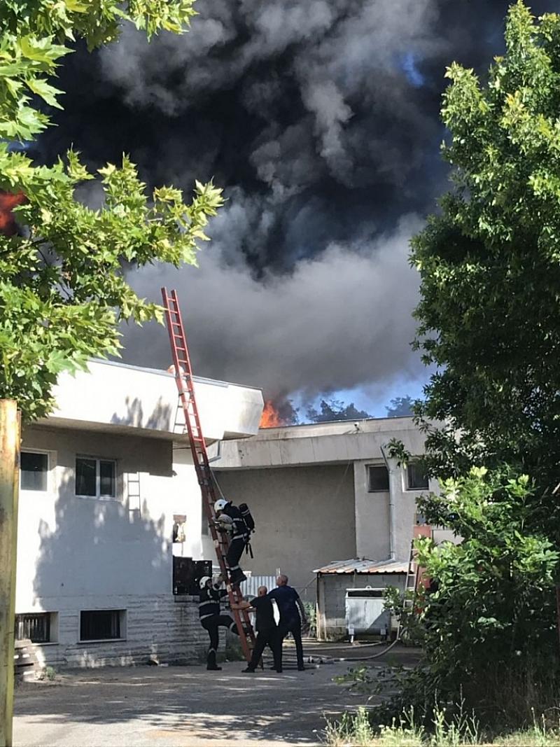 """Пожар е избухнал преди минути в ресторант """"България"""" в Павел"""