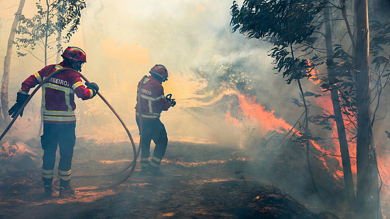 Хиляда пожарникари се борят с избухналите в събота горски пожари