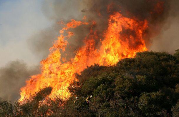 99% от летните пожари предизвикани от човешка дейност
