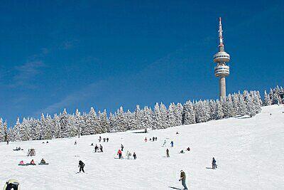 zima_2.jpg