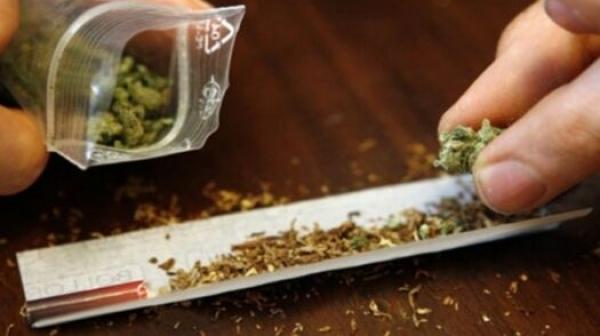 МВР се похвали със задържана наркобанда с 15-20 грама трева