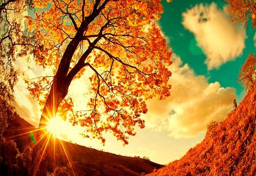 Слънцето в петък отново ще грее в цветовете на есента