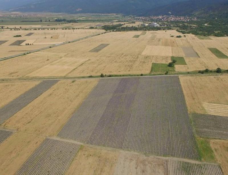 Отдават се под наем свободни земеделски земи от държавния поземлен