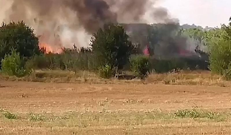 """Магистрала """"Марица"""" е затворена заради пожара в борова гора, който"""