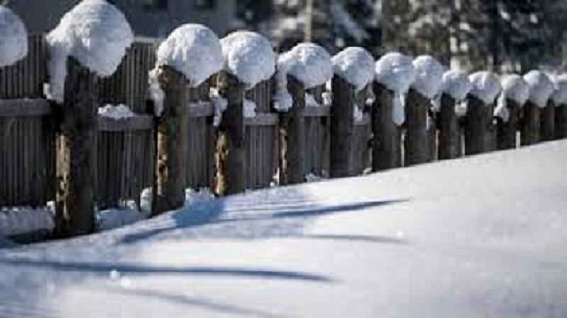 Най-ниските температури през януари у нас ще бъдат между минус