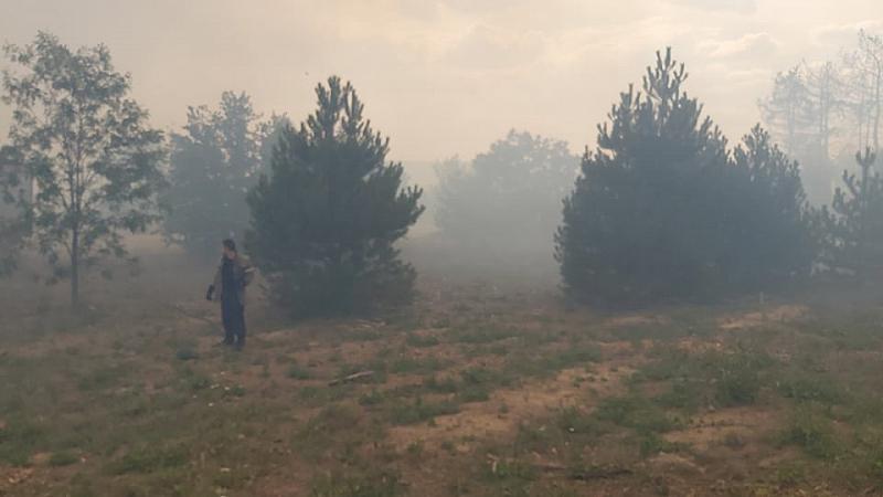 Пожари горят в цялата страна. Продължава неконтролируемо да се разрастват
