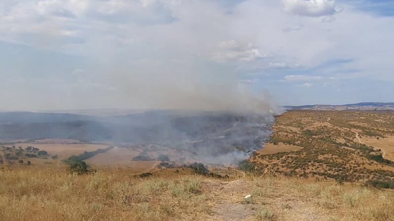Потушен е пожарът, който възникна край хасковското село Нова Надежда.