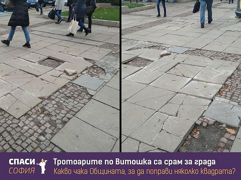 """Неправителствената организация """"Спаси София"""" се оплака от лошото състояние на"""