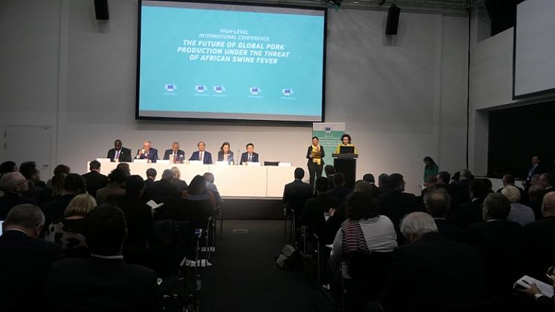 Над 35 млн. евро струва на България борбата с африканската