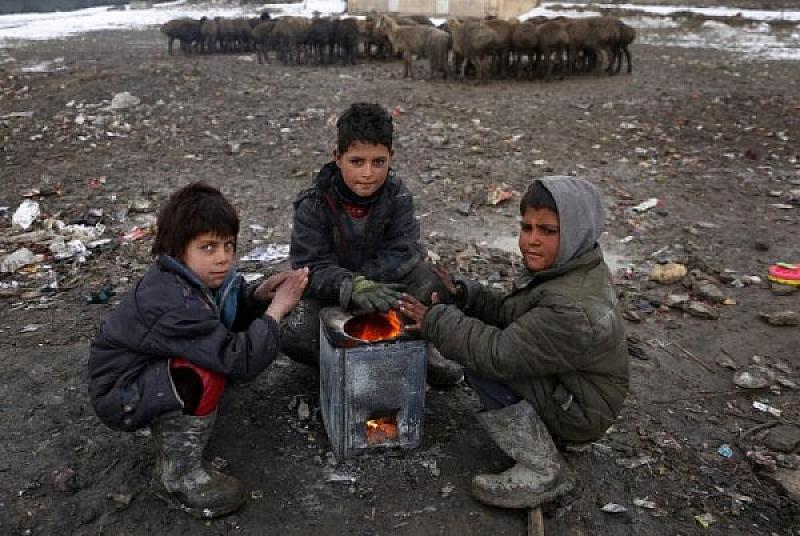 Според публикувания годишен доклад на Агенцията на ООН за бежанците,