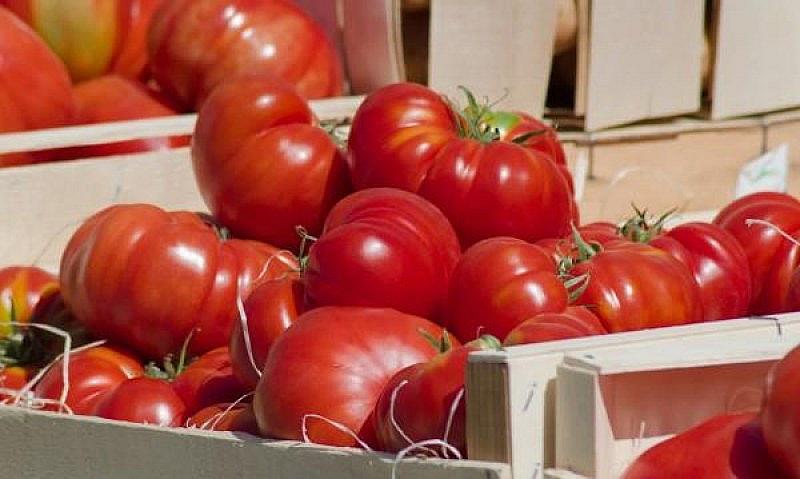Повечето българи са сигурни, че днес доматите не са като